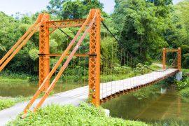 suspension bridge, Blanchisseuse, Trinidad